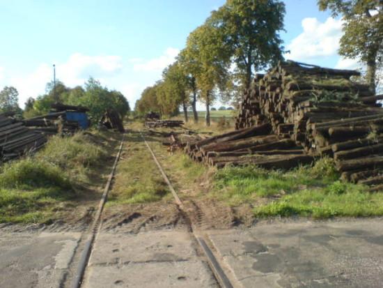 Bezprawna rozbiórka 120 letniej zabytkowej linii kolejowej PKP nr 240 na odcinku Dorotowo - Sypniewo - Więcbork foto Tomasz Bracka