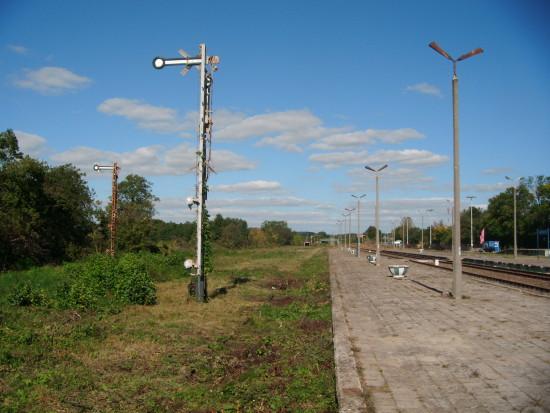 Tak jak wyglądają tory na stacji PKP Więcbork na czynnej linii kolejowej NR 281 obraz nędzy i rozpaczy czas odchwaścić te dwa tory środkiem chemicznym by tego wiecznie nie kosić 21.09.2016r. !!! foto Tomasz Bracka