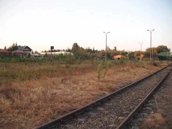 Zdewastowane podkłady i tory oraz bujny ogród botaniczny na stacji PKP Więcbork 27.09.2016r. - foto Tomasz Bracka