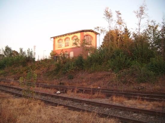 Zdewastowane budynki kolejowe podkłady, tory oraz bujny ogród botaniczny na stacji PKP Więcbork 27.09.2016r. - foto Tomasz Bracka