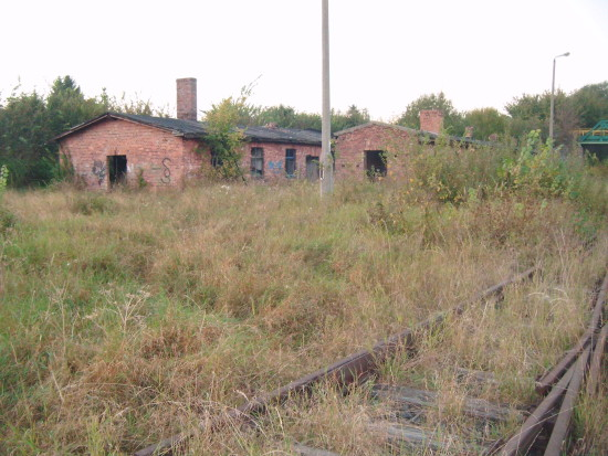 Zdewastowane budynki i ogród botaniczny na 4 torach stacji PKP Więcbork 27.09.2016r. - foto