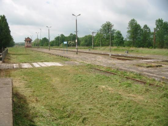 Po mojej interwencji w PKP PLK SA  znaczna cześć stacji PKP Więcbork została dziś oczyszczona. Więcbork 16. 06. 2017 r. - foto Tomasz Roman Bracka