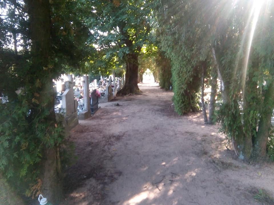 Czas nakolejne alejki polbrukowe natym cmentarzu. któryutrzymujemy płacąc zapochówki irezerwacje. foto Tomasz Roman Bracka