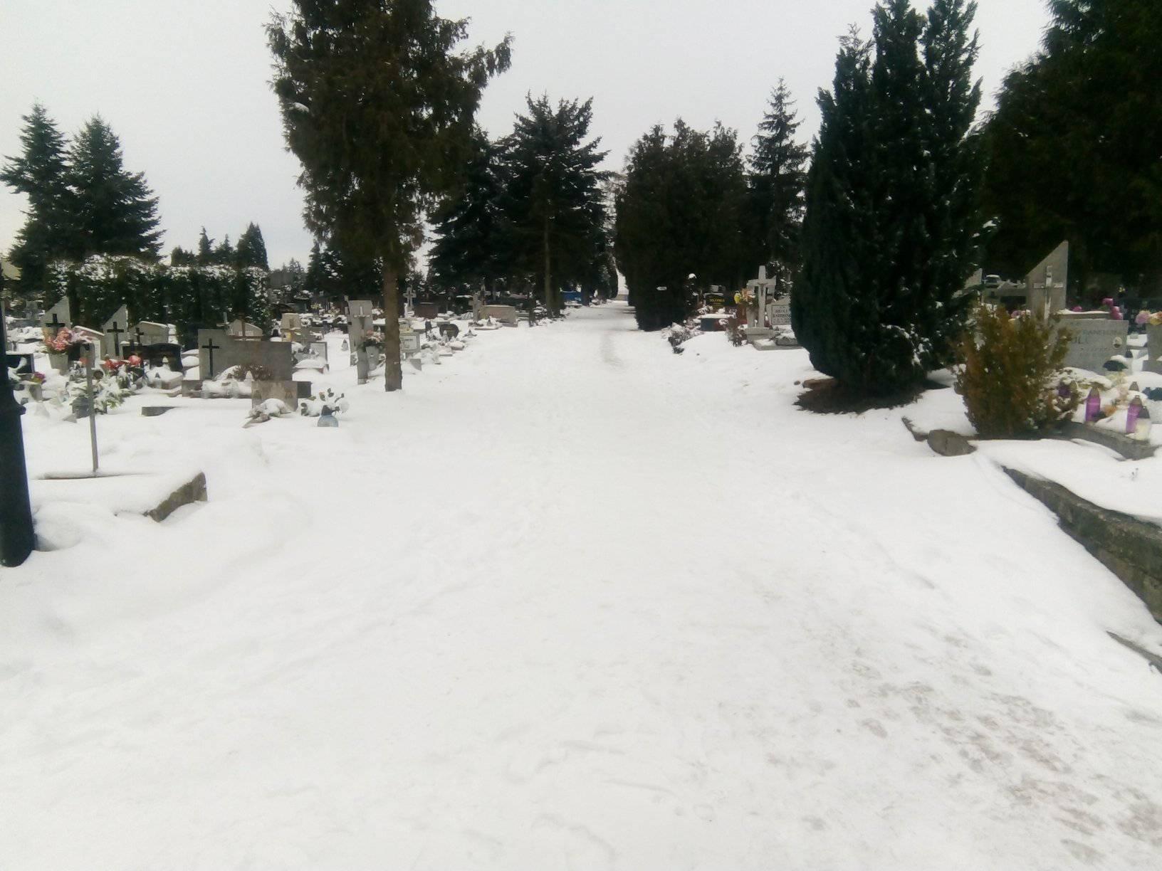 Dziś 7 lutego 2021 r. minęło pół roku odprzedwczesnej śmierci mojejMamy śp Renaty Bracka, którą odwiedziłem nazaniedbanym przezburmistrza Więcborka iZGK Więcbork więcborskim cmentarzu komunalnym - foto Tomasz Roman Bracka